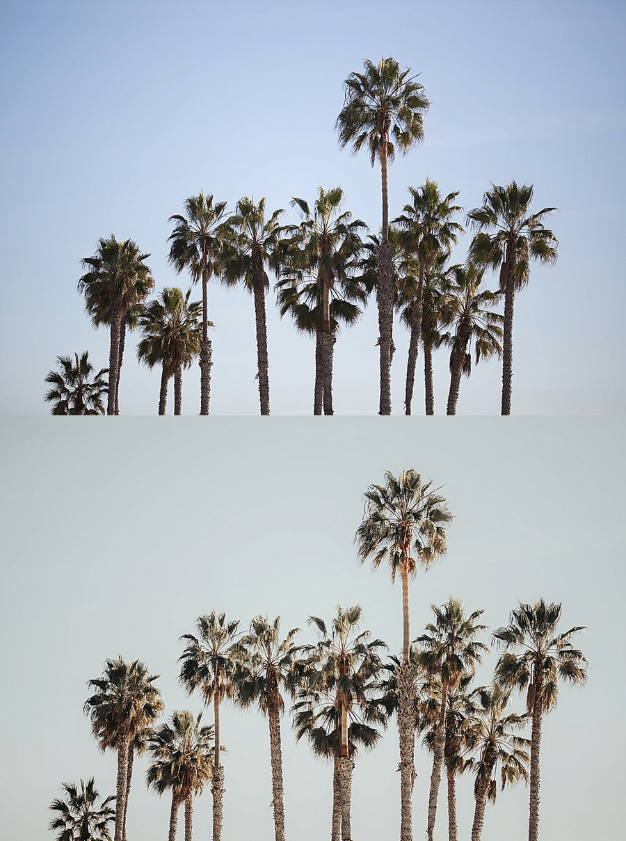 California Dreaming Collection | Lightroom Presets