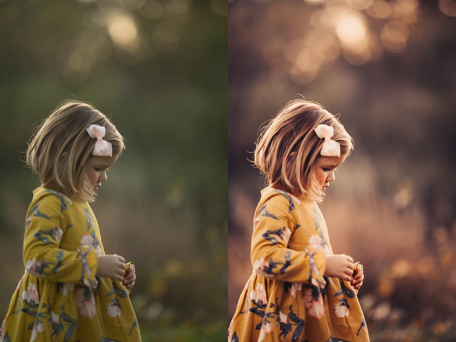 Bundle: Blue Moon and Copper Moon | Lightroom Presets