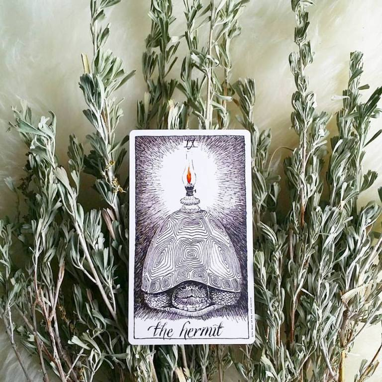 The Wild Unknown Tarot by Kim Krans
