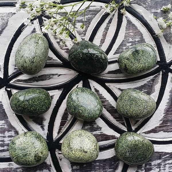 Green Snakeskin Jasper Tumbled (1 PIECE)