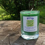 Money Soy Wax Candle