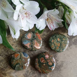 Rhyolite Palm Stone (1 PIECE)