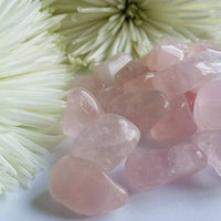 Rose Quartz Tumbled (1 PIECE)