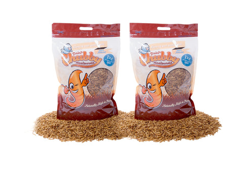 2Kg Chubby Dried Mealworms