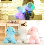 Light up Stuffed Puppy - Slim Wallet Company