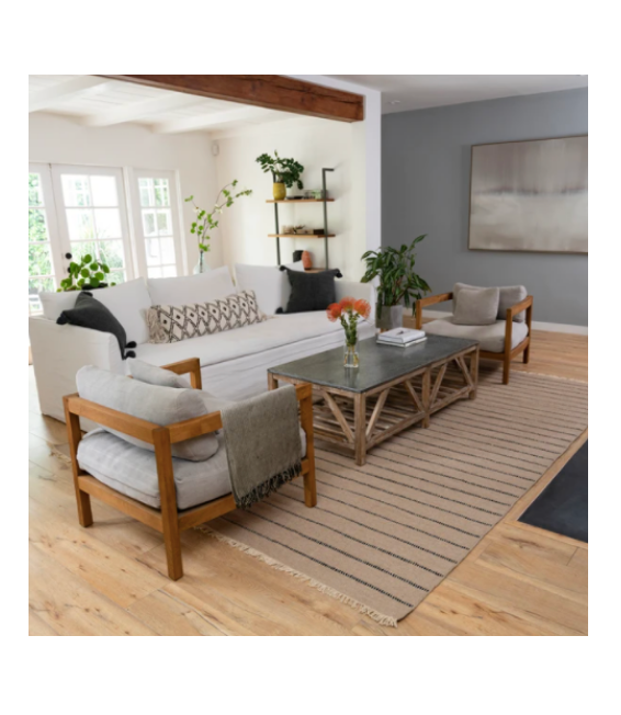 A living room, styled in a casual California style