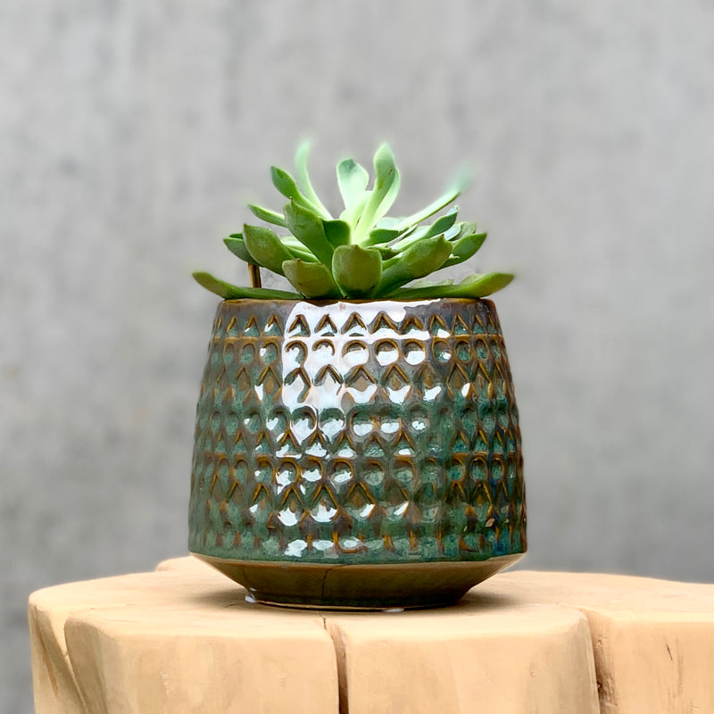 Flowerpot Stoneware / Brown