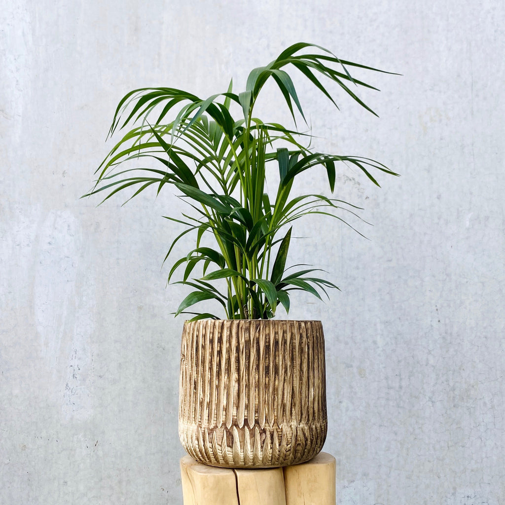 Oskar Wooden Planter