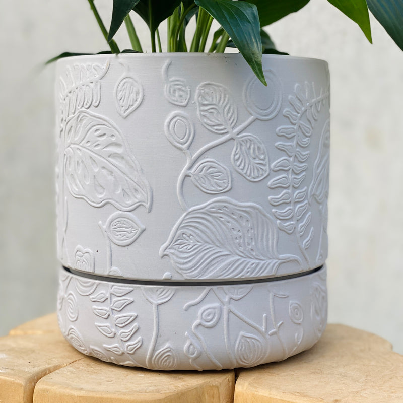 Peace Lily + Folia Relief Pot Grey