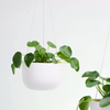 Raw Earth Hanger / Chalk White