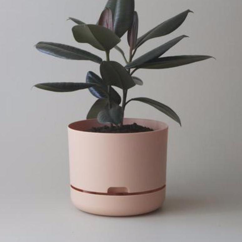 Selfwatering Plant Pot 25cm / Pale Apricot (Mr Kitly)