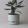 Selfwatering Plant Pot 25cm / Fog (Mr Kitly)