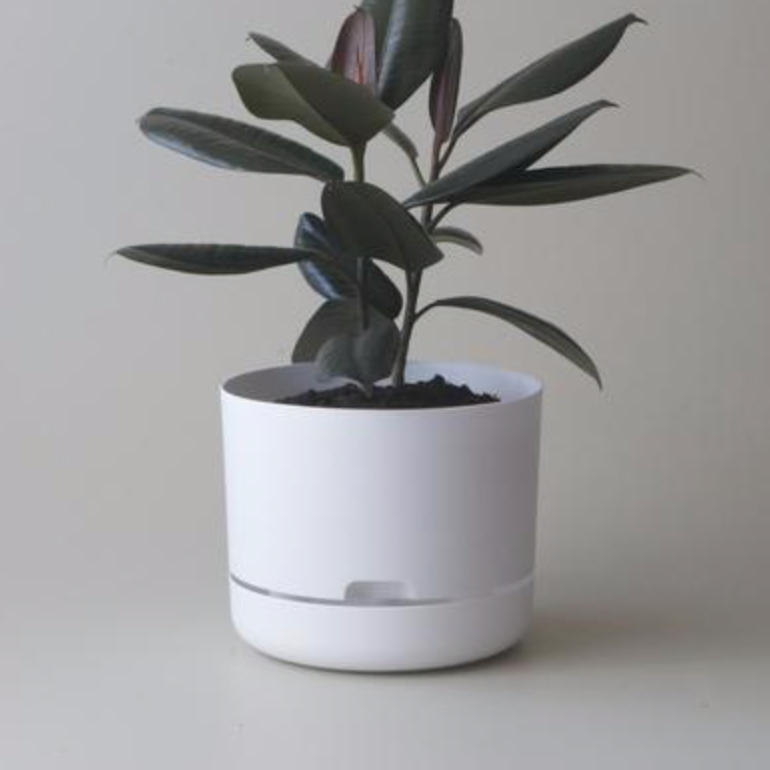 Selfwatering Plant Pot 25cm / White (Mr Kitly)