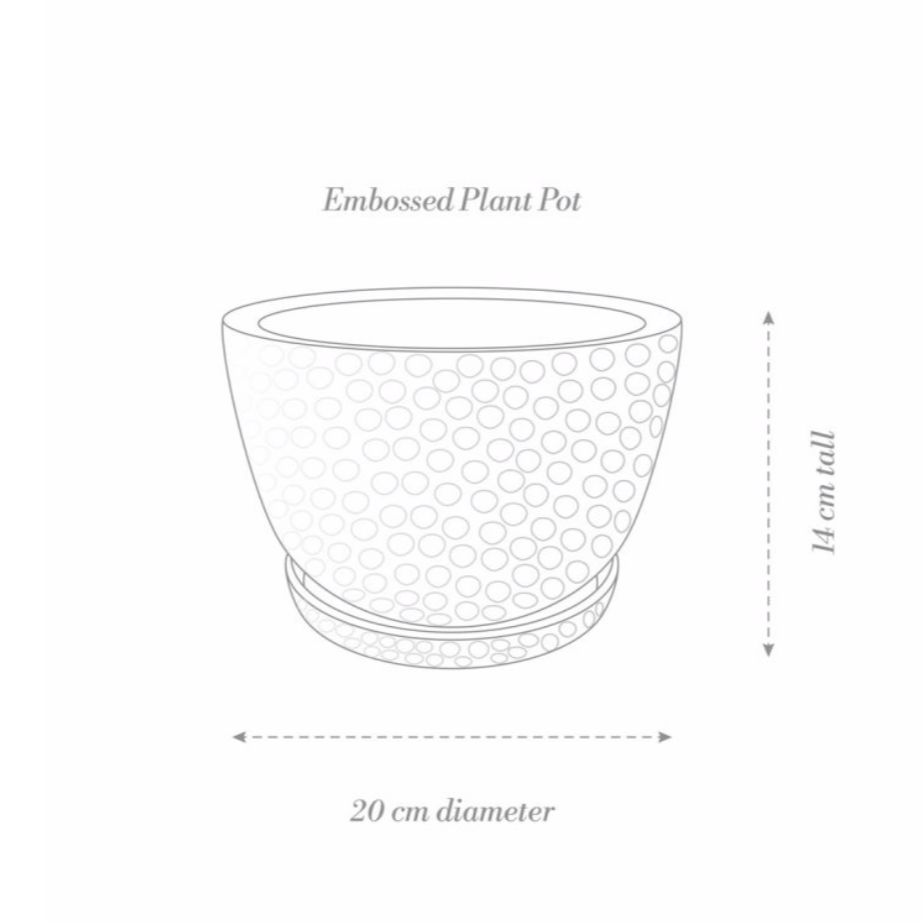 Embossed Plant Pot