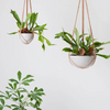 Macrame Hanging Planter Large / Grey (Angus & Celeste)
