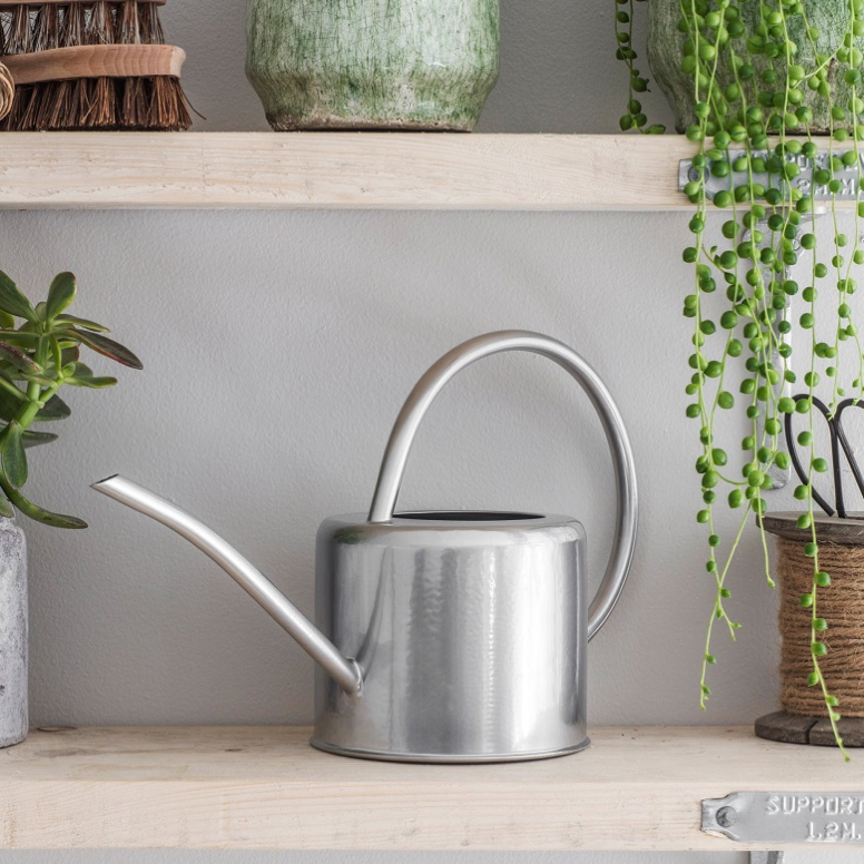 Watering Can / Silver