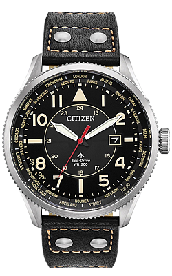 Citizen Promaster Nighthawk World Time Watch, BX1010-02E