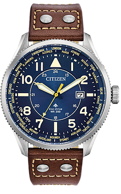 Citizen Promaster Nighthawk World Time Watch, BX1010-11L
