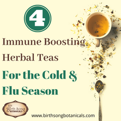 4 of the Best Immune Boosting Herbal Teas for the Cold and Flu Season