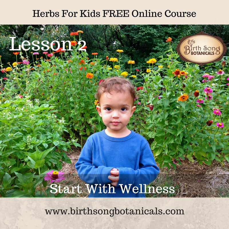 LESSON 2- Start With Wellness -Cooking with Medicinal Herbs