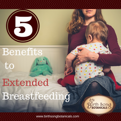 Five Benefits to Extended Breastfeeding