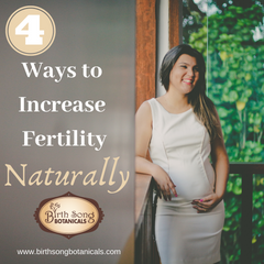 Four Ways to Increase Fertility Naturally