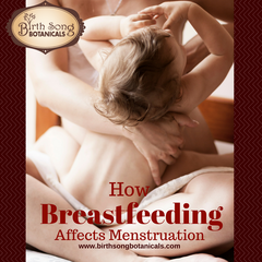 The Relationship Between Breastfeeding and Menstruation