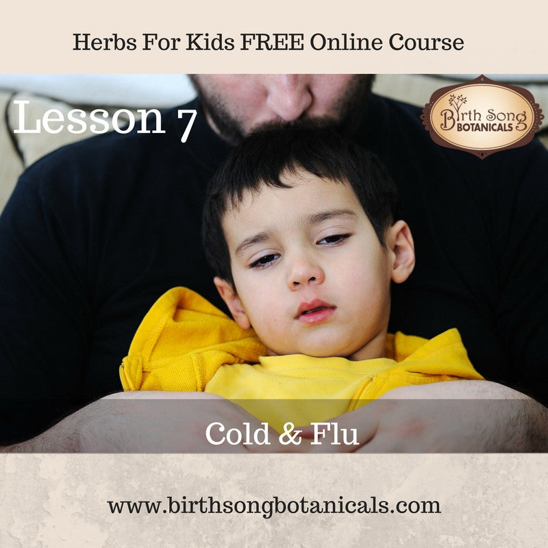 LESSON 7- Cold & Flu