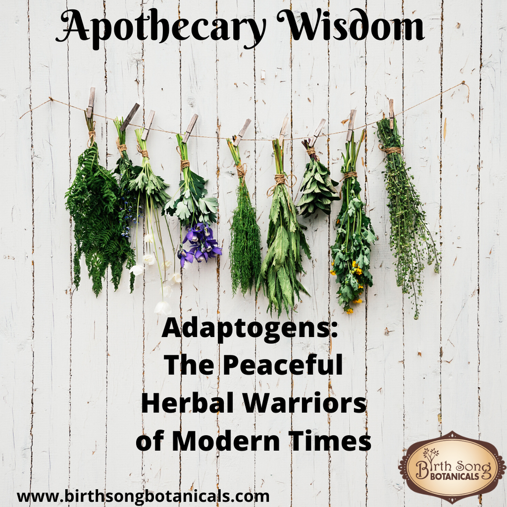 Adaptogens: The Peaceful Herbal Warriors of Modern Times