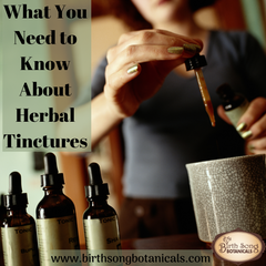 What You Need to Know About Herbal Tinctures