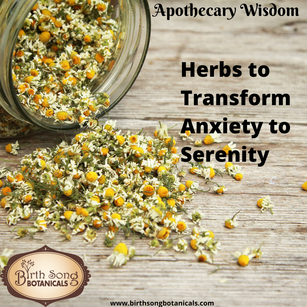 Herbs to Transform Anxiety to Serenity