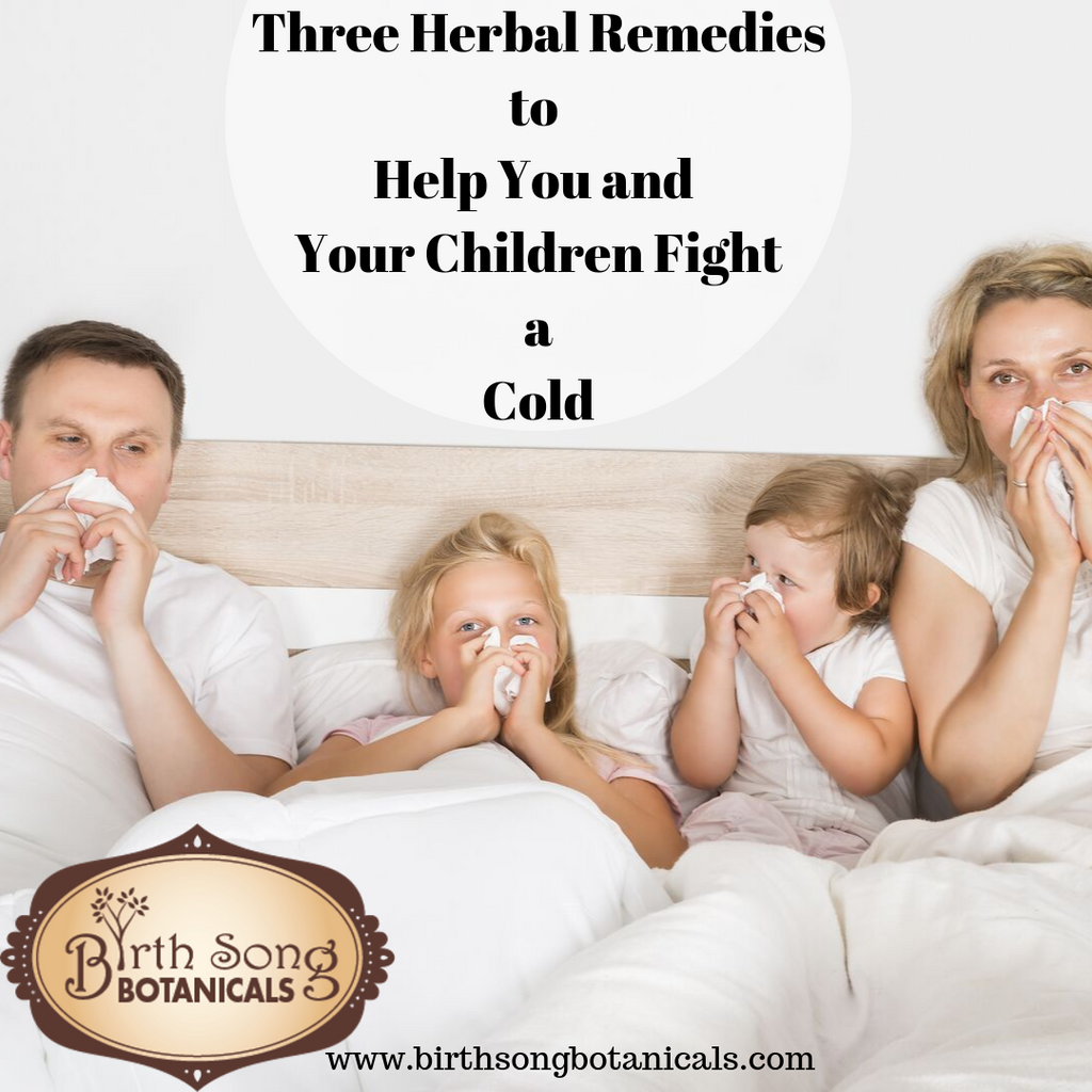 Three Herbal Remedies to Help You and Your Children Fight a Cold