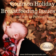Common Holiday Breastfeeding Issues (and How to Prevent Them!)
