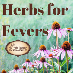 How To Take Care Of A Fever With Herbs and Hydrotherapy