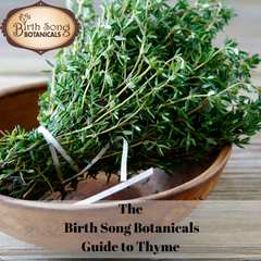 The Birth Song Botanicals Guide to Thyme