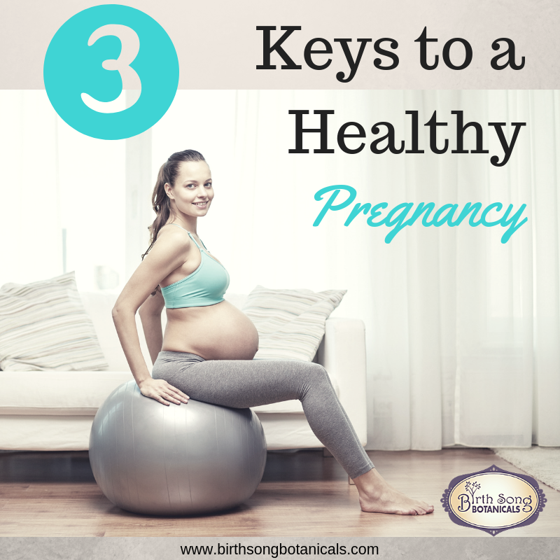 3 Keys to a Healthy Pregnancy