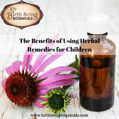 The Benefits of Using Herbal Remedies for Children