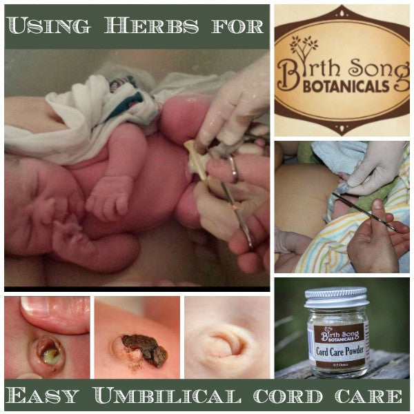 Using Herbs for Easy Umbilical Cord Care