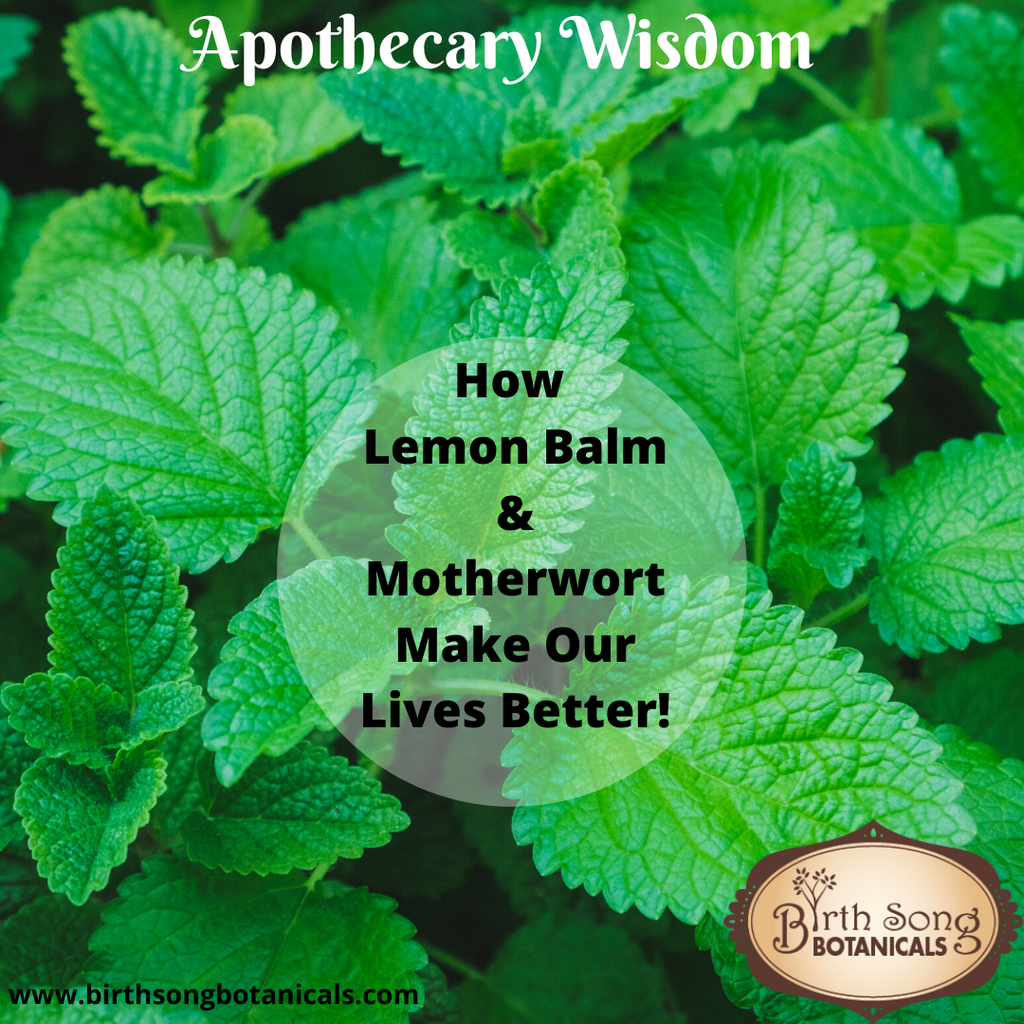 How Lemon Balm & Motherwort Make Our Lives Better!