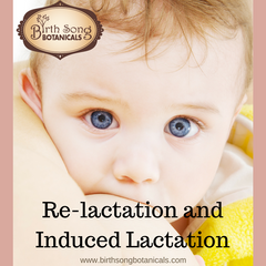 Re-Lactation and Induced Lactation - Breastfeeding After a Break or When you Never Have