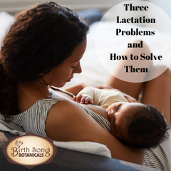 Three Lactation Problems and How to Solve Them