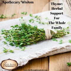 Thyme: Herbal Support For The Whole Family