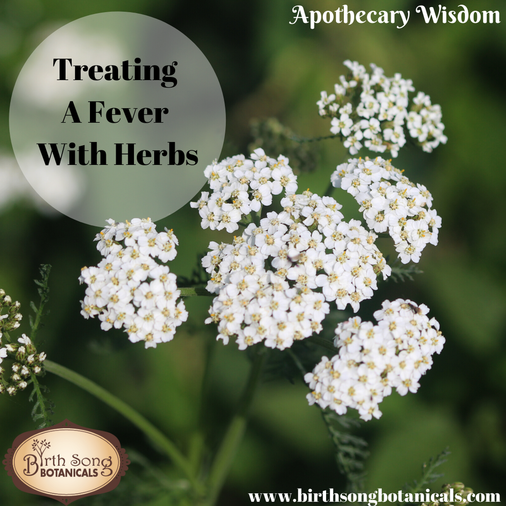 Treating A Fever With Herbs