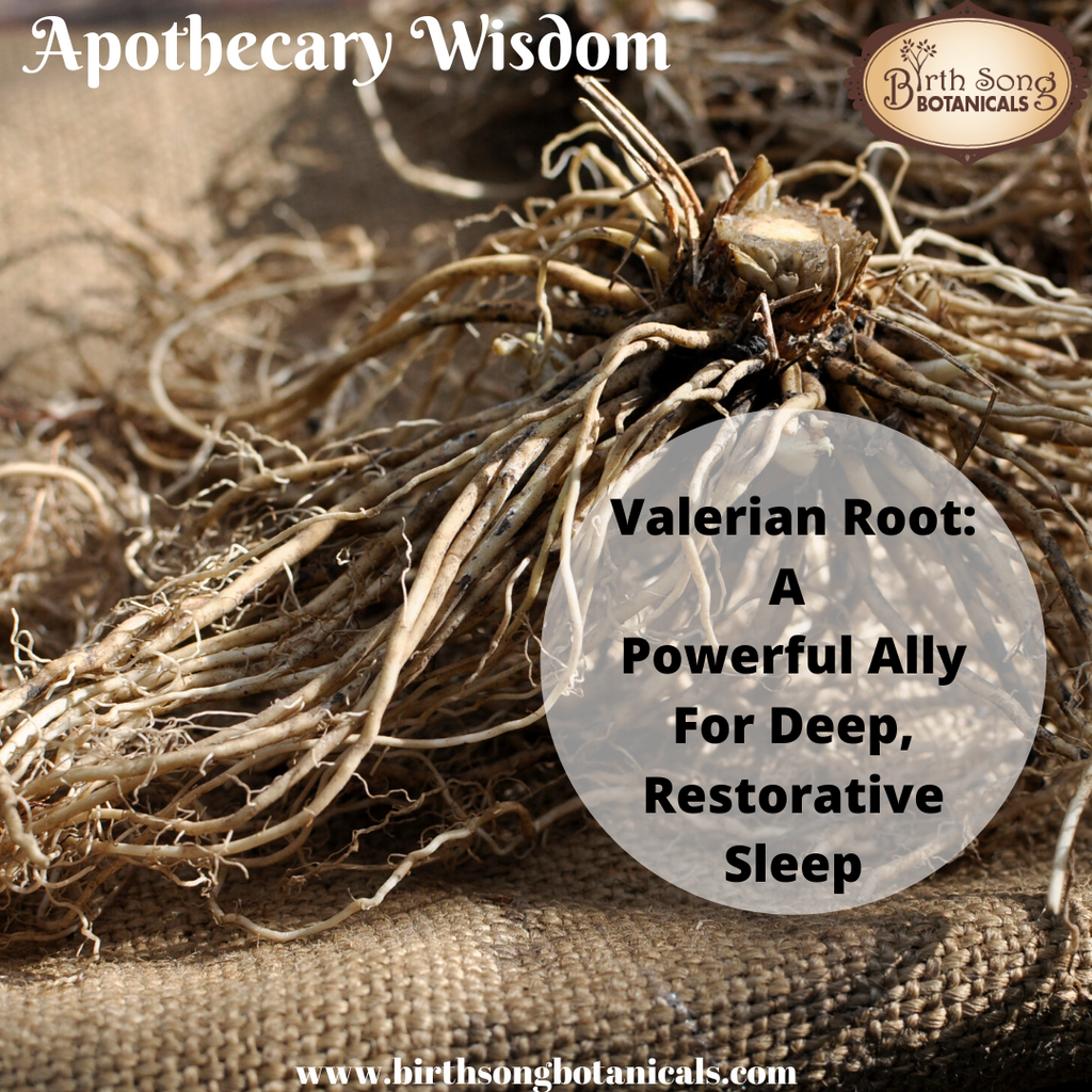 Valerian Root: A Powerful Ally For Deep, Restorative Sleep