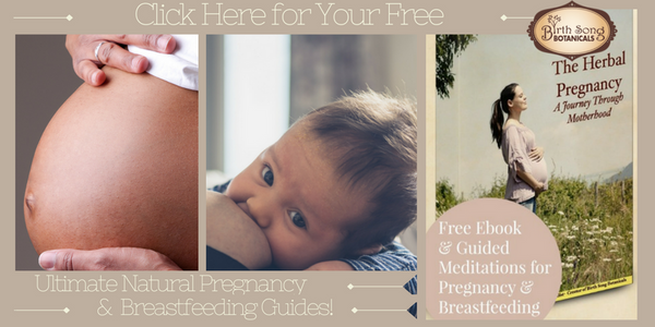 Free Ultimate Pregnancy and Breastfeeding Guide