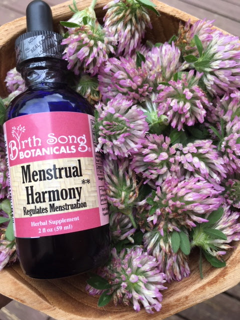 red clover herbal tincture for menstruation