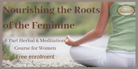 Free Herbal & Meditation Lessons To Nourish Your Feminine Roots