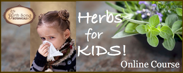 Herbs For Kids Online Course