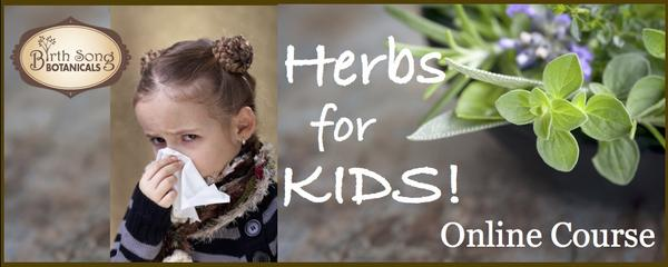 Herbs for kids ebook and online course for the cold and flu season