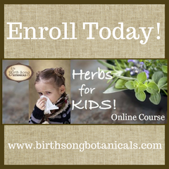 Herbs for Kids course